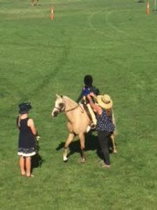 Korumburra Show 2017 - horse show
