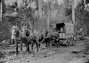 Korumburra Butter Factory Cart