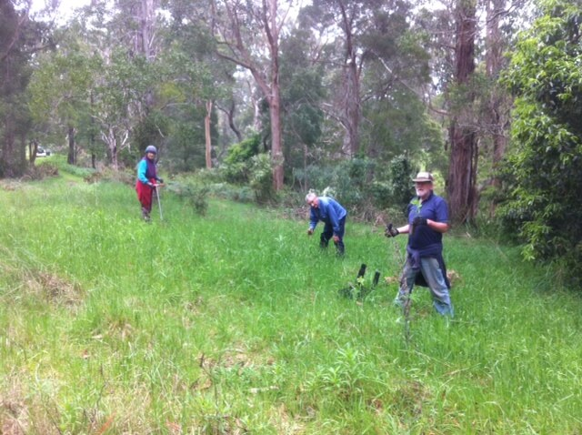 friends of richies reserve