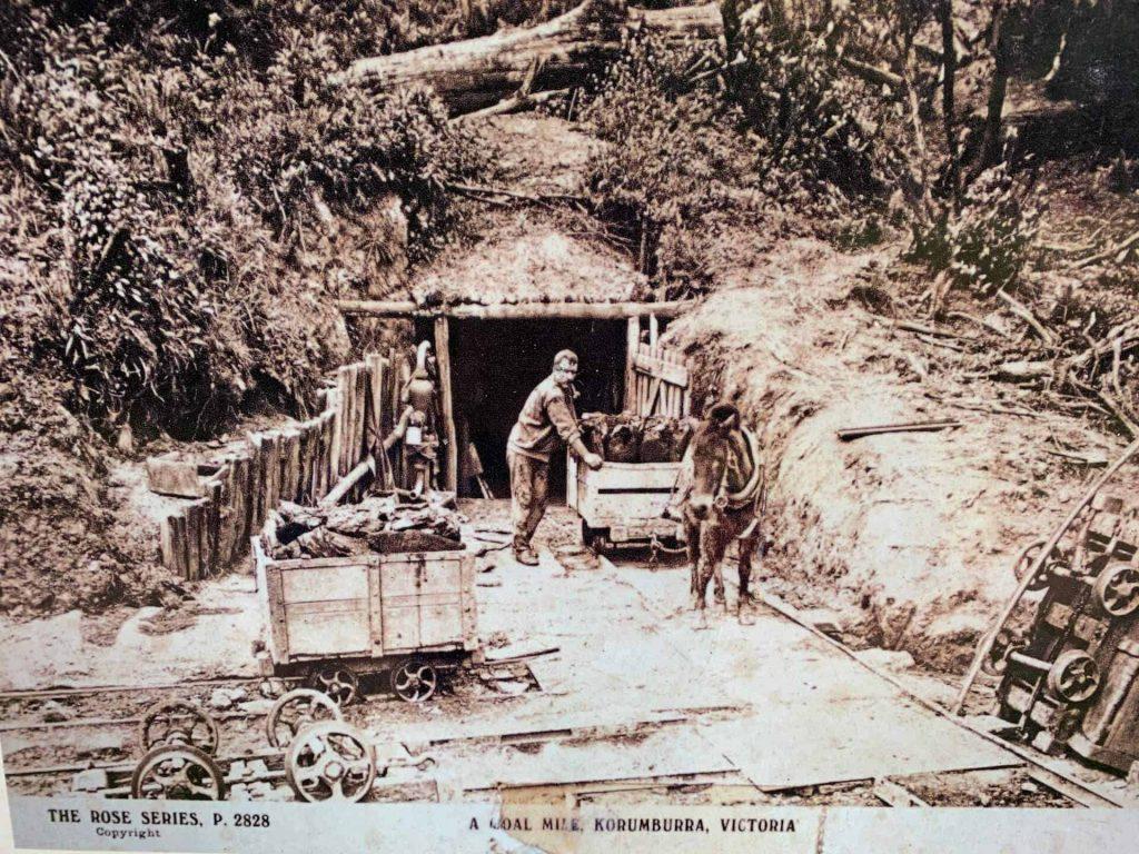 historic coal mine likely in Richies Reserve Korumburra
