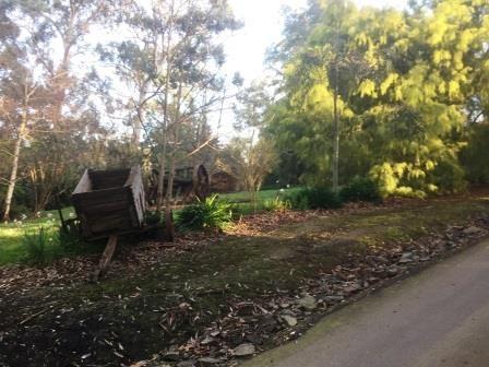 treacys garden2